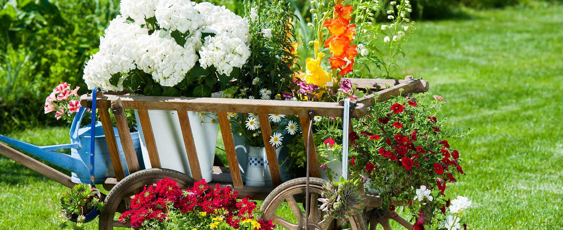 Gardeners Blackfen